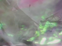 Arctic Eden II - Video Still