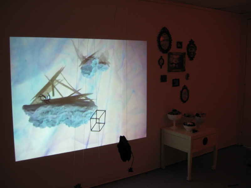 Butterflies Shift North - Installation View Arctic Eden II